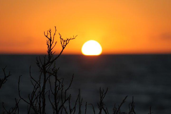 Elwood Sunset